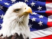 Speculatietaks in het buitenland VS